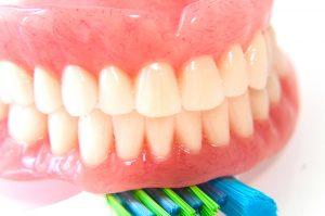 歯茎の写真