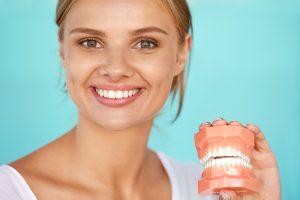 歯の模型を持っている笑顔の女性