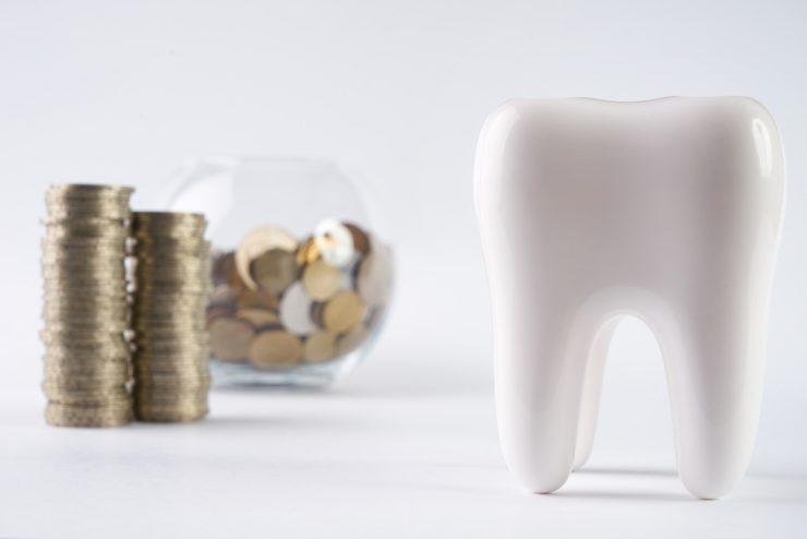 歯の模型とコイン