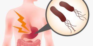 胃を攻撃する細菌のイラスト