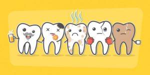 様々な歯のイラスト