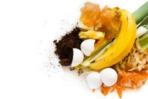 卵の殻やくず野菜などの生ごみ