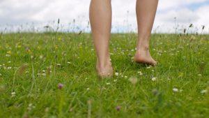 原っぱを裸足で歩く
