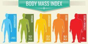 肥満別危険度