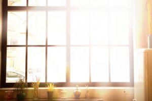 優しい光が差し込む窓際