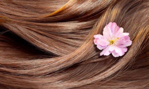 ブラウンの髪の毛