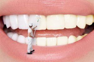 モップで大きい口を掃除している男性