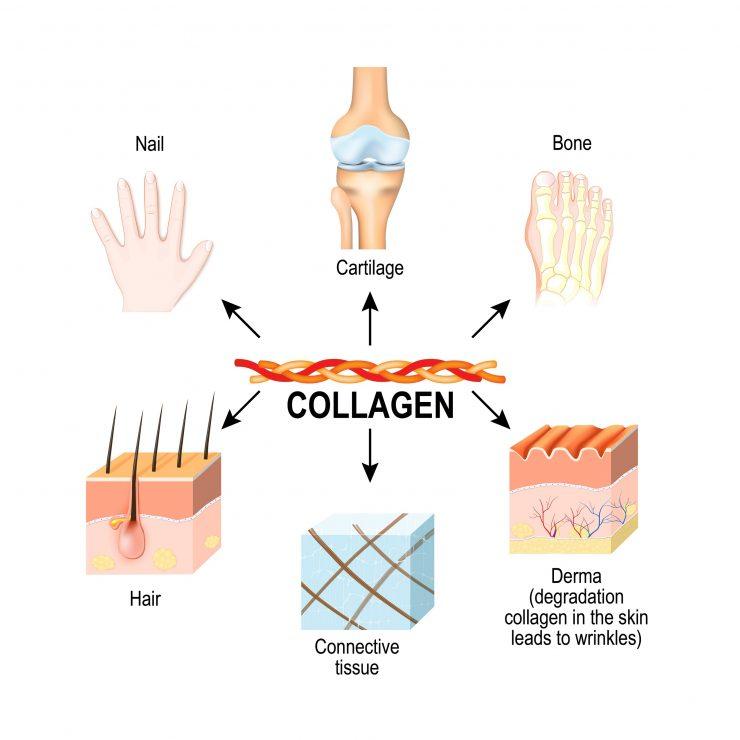 コラーゲンの効果