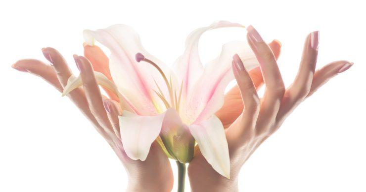 手で花を咲いているイラスト