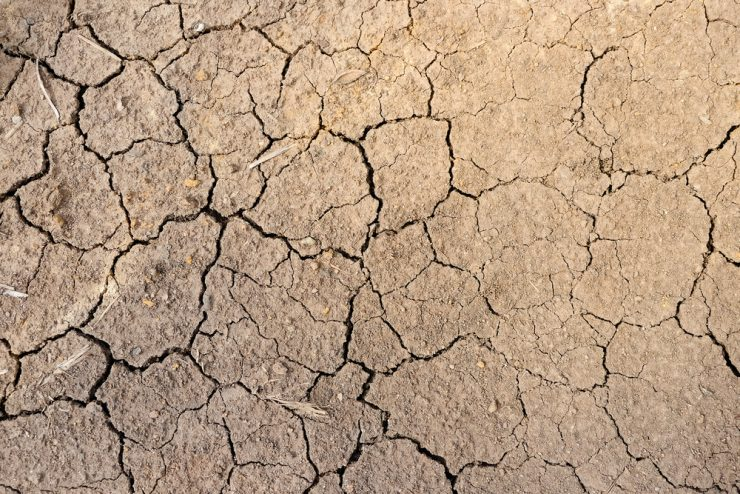 乾いた地面